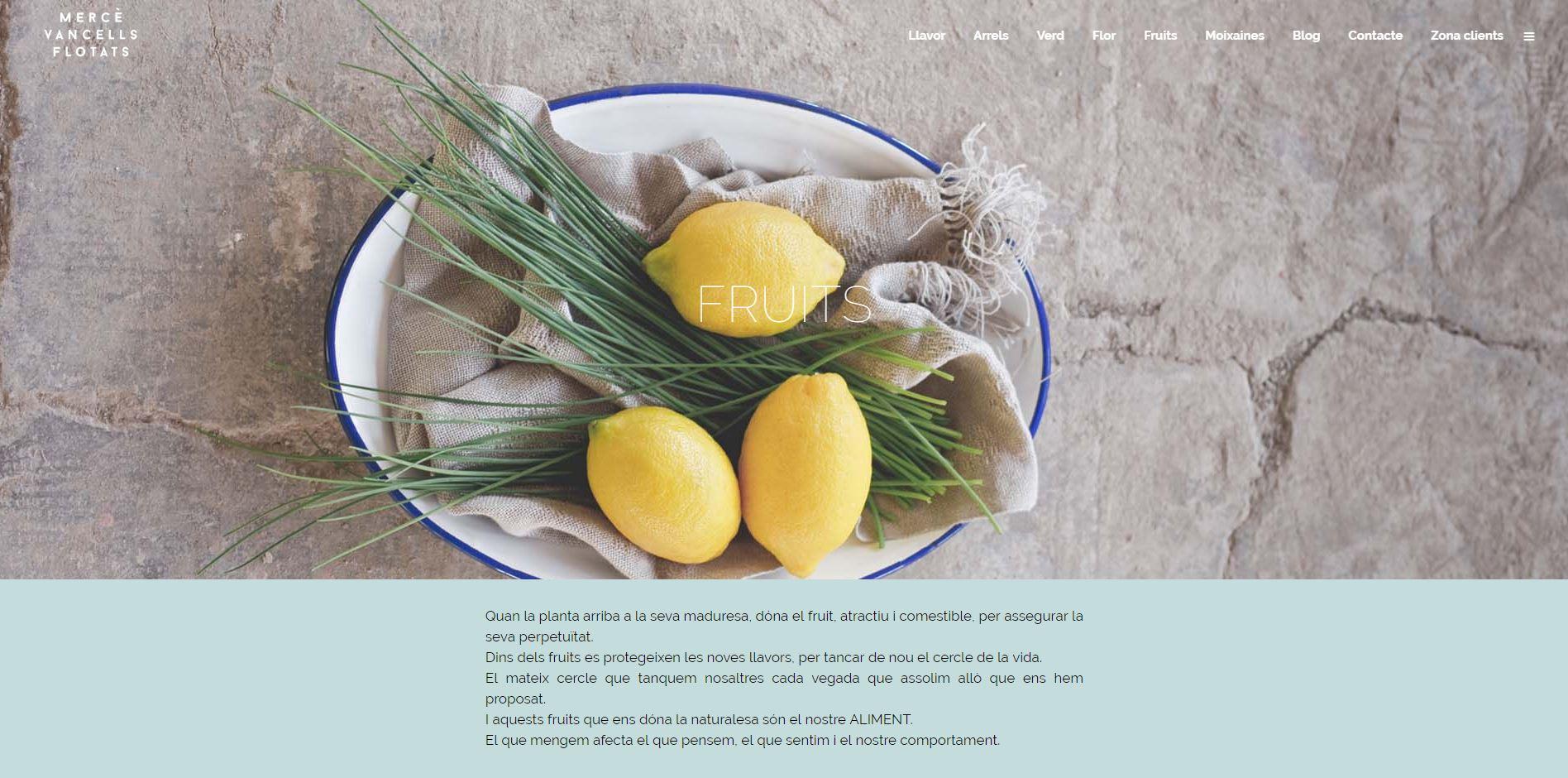 web_mercevancells-fruits